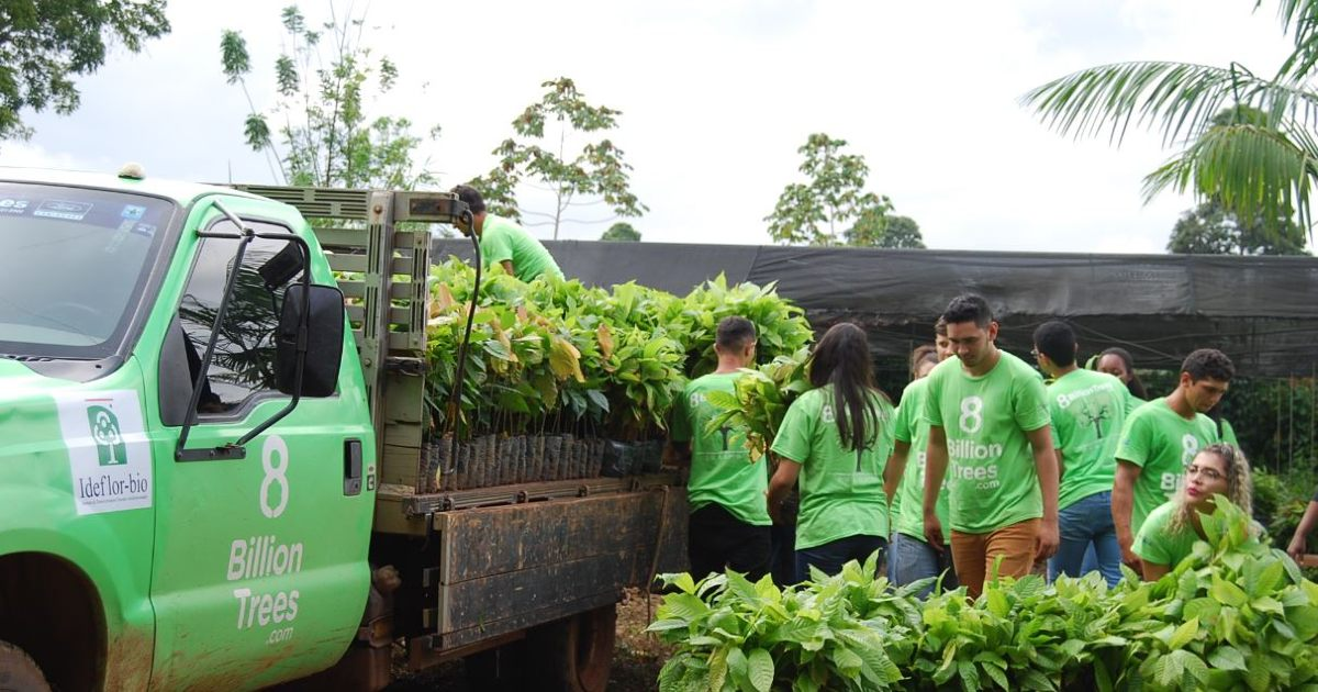 A dozen 8 Billion Trees team members wearing 8 Billion Trees brand t- shirts load hundreds of native trees(saplings) onto a green hauling truck with 8 Billion Trees logo at a nursery in the remote Amazon rainforest, State of Tocantins