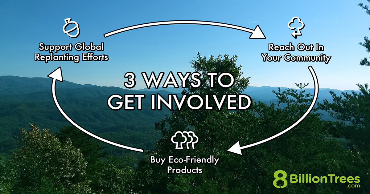 An image of pitch pine, scrub pine, and oak trees on Foothills Parkway in Smoky Mountain National Park with white text that explains 3 ways to get involved in mitigating climate change. 1. Support global replanting efforts. 2. Reach out in your community. 3. Buy eco-friendly products.
