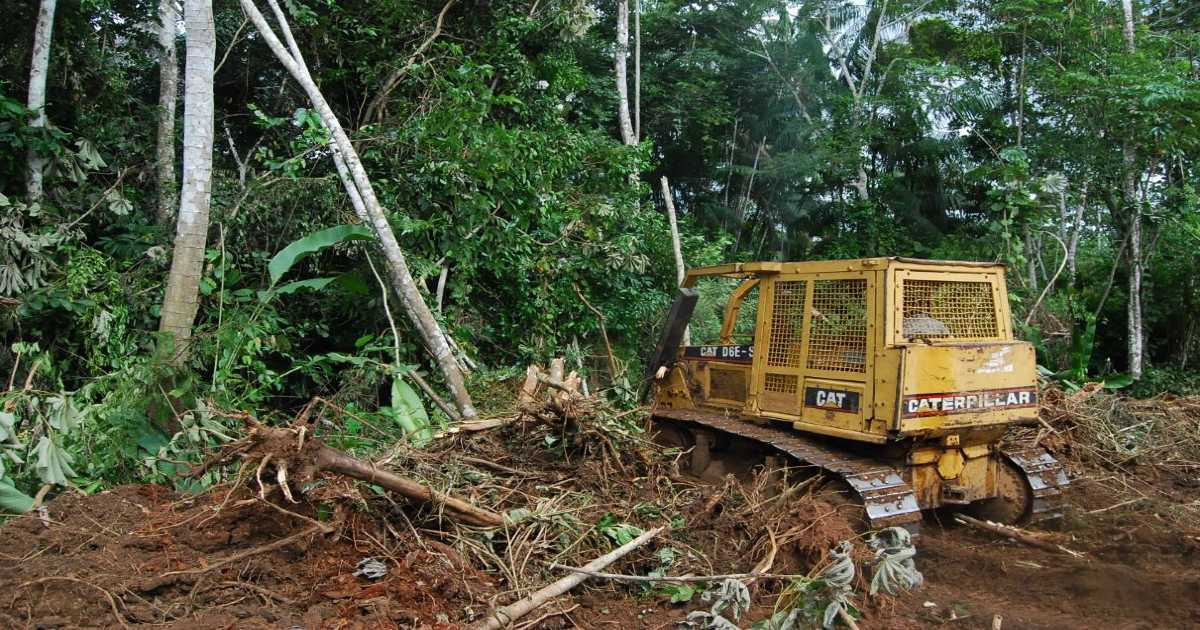 A yellow construction bulldozer picks up roots, plows down trees, and destroys the Amazon rainforest near the Amazon Basin on the State of Tocantins; deforestation of the Amazon is at an all time high and is releasing significant amounts of greenhouse gases