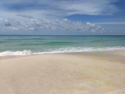 A photograph of the acidified ocean in Panama City Beach, FL (Redneck Riviera) with cloudy skies, aqua green hues, and beach sand in the foreground.