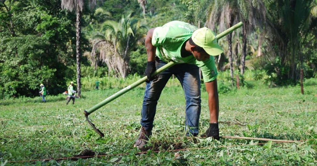 An 8 Billion Trees team member at a planting site with a hoe in hand to offset greenhouse gases from flights and other modes of transportation.