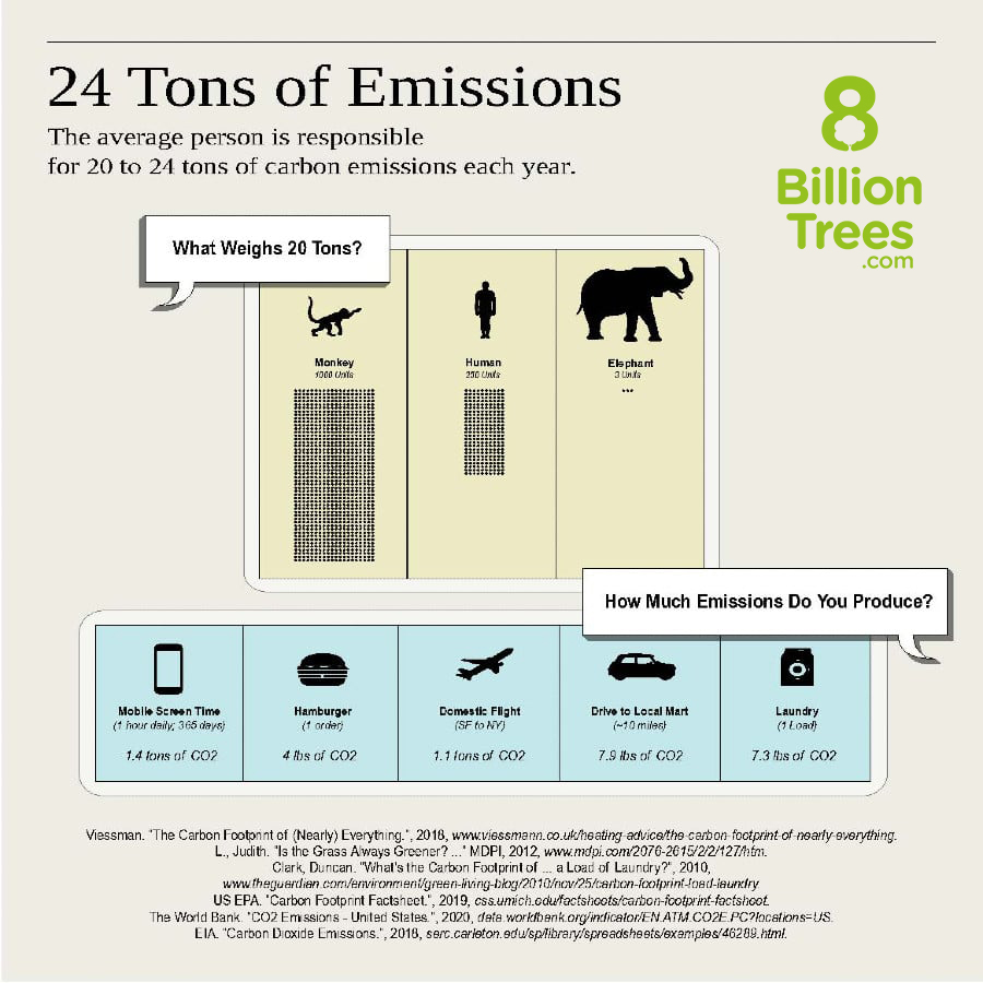 Chart displaying the average person is responsible for 20-24 tons of emissions and amount of emissions caused by flights (1.1 ton of CO2), 10 miles of road travel (7.9lbs of CO2), and laundry appliances (7.3lbs of CO2).