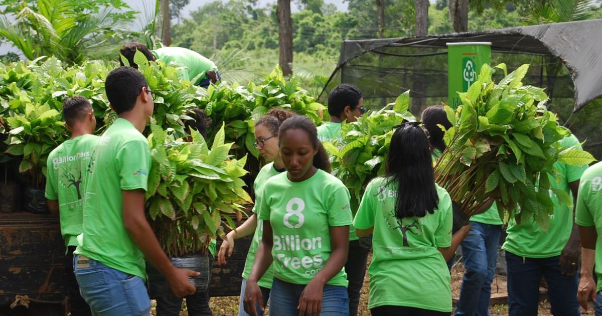 To offset carbon emissions several people in 8 Billion Trees shirts move saplings(small trees) into a truck bed with a nursery in the background