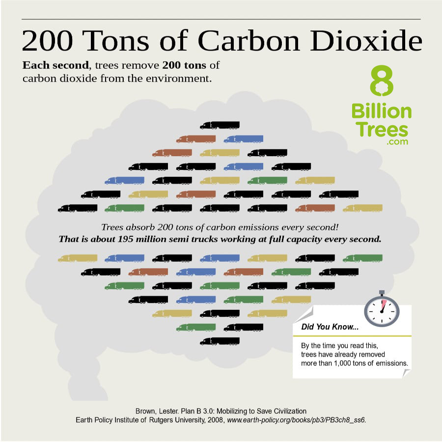 """A graphic image with a lot of tiny semi trucks to convey that """"each second, trees remove 200 tons of carbon dioxide from the environment. That is about 195 million semi trucks working at full capacity every second."""", followed by an image of a stopwatch that says """"by the time you read this trees have already removed more than 1000 tons of emissions"""""""