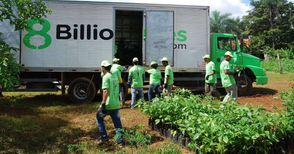 Seven 8 Billon Trees team members wearing green shirts and unloading native saplings from a large truck to reverse climate change and habitat fragmentation of the Amazon Rainforest.