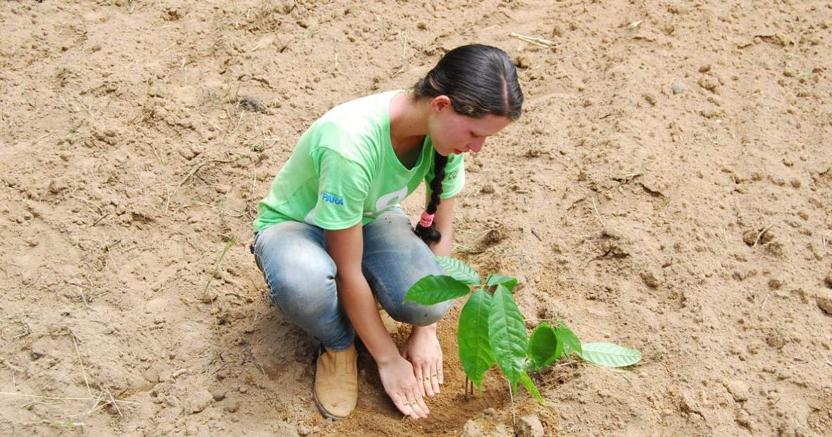 8 Billion Trees team member(young lady) wearing a green 8 Billion Trees brand t-shirt and blue jeans kneels down to pat down the dirt around a native tree after planting in designated planting site in the Amazon rainforest(State of Tocantins), area that supports over 40,000 plant species