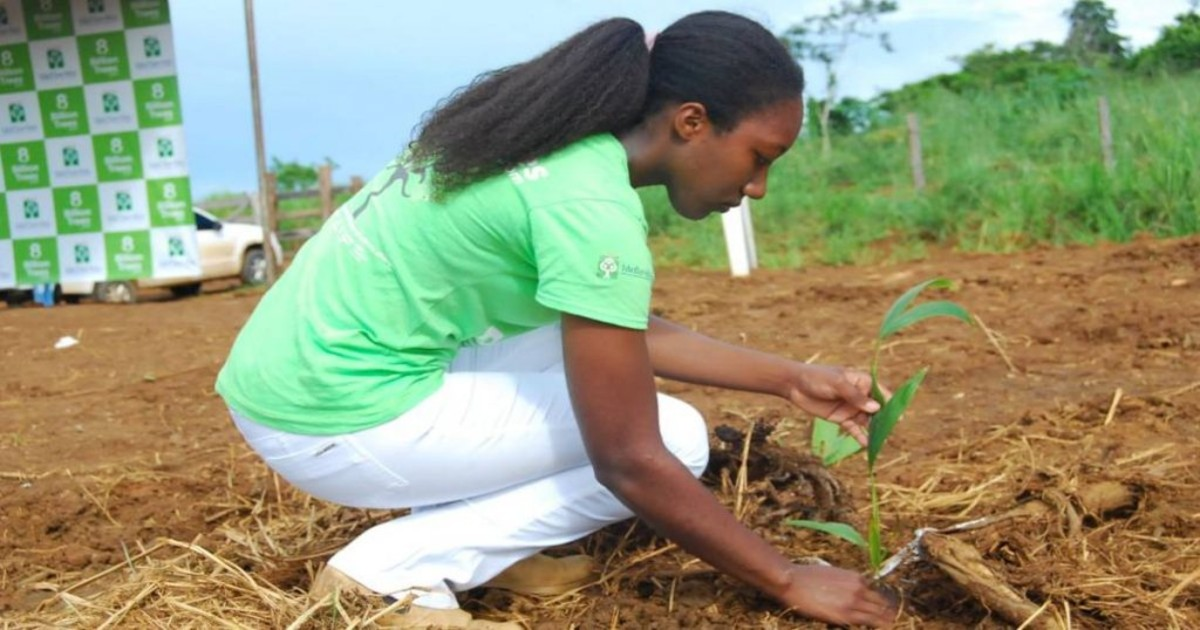 Image of an 8 Billion Trees team member(young lady) in green 8 Billion Trees brand t-shirt and white pants kneeling down planting a native sapling and patting the ground with Amazon Basin forest in the background