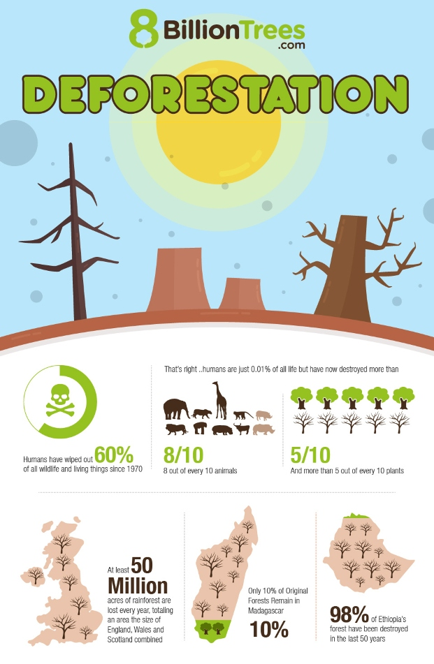Infographic displaying over a dozen facts regarding deforestation with graphic images of trees, animals, and humans from top to bottom; humans have wiped out 8 out of every 10 animals, 5 out of every 10 trees, and 60 percent of all wildlife since 1970