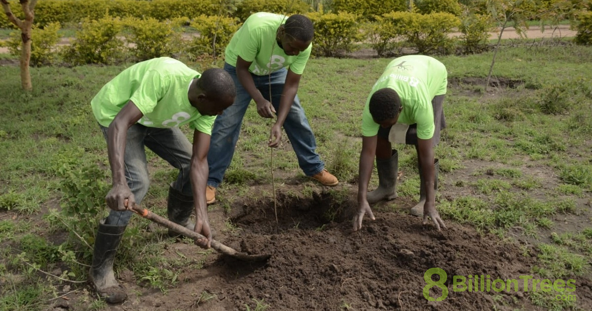 Local youth of Kenya wearing 8 Billion Trees t-shirts while planting trees in community