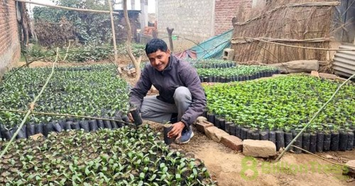 Hement kneeling in 8 Billion Trees nursery with saplings all around