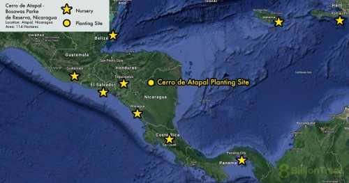 Map showing the location of 8 Billion Trees Planting Project and nurseries in Nicaragua