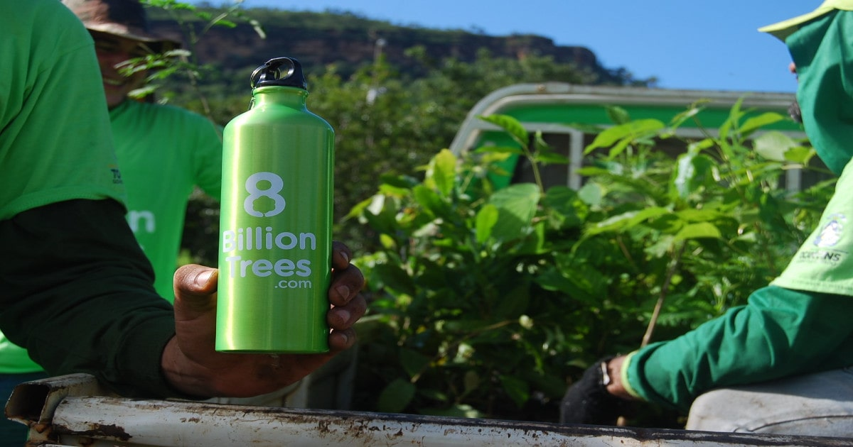 An metal 8 Billion Trees water bottle being help with saplings in the background.