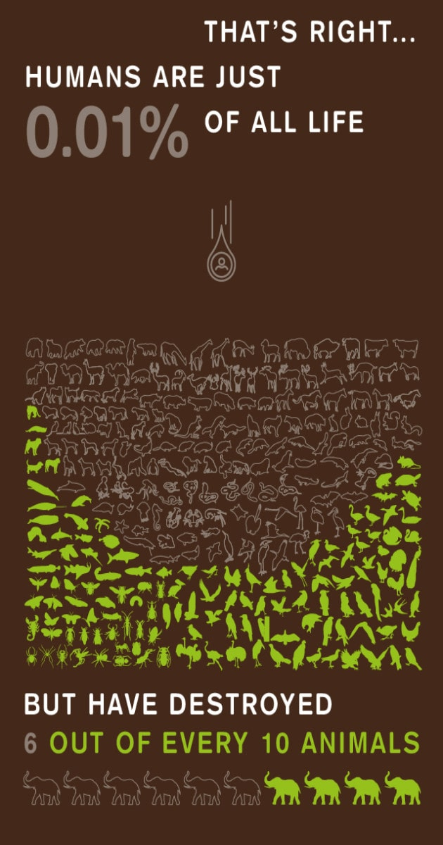 8 Billion Trees graphic image displaying the impact humans have had on life on earth from top to bottom; humans are 0.1 percent of life on earth and have destroyed 6 out of 10 animals with hundreds of small animal outlines with only the remaining animals highlighted in green