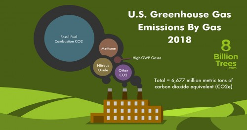 8 Billion Trees infographic image displaying the greenhouse gases with a factory graphic image in the middle with circles of gases emitting into the atmosphere from left to right; carbon dioxide from fossil fuels combustion, methane, nitrous oxide, and other carbon dioxide all add up to 6,667 million metric tons of carbon dioxide