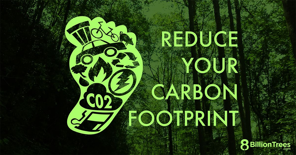A green footprint with icons of electricity, fire, recycling, bicycles, and trash inside of it with text saying