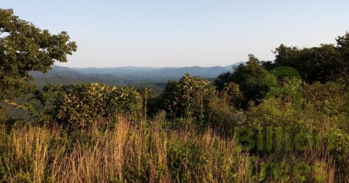 "Unicoi, Tennessee ""Beauty Spot"" vista, showing the side facing North Carolina."