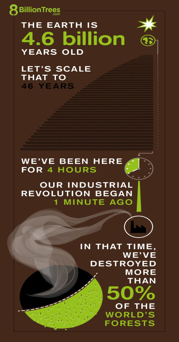 Graphic showing history timeline, humans have been here 4 hours, but have destroyed over 50% of the world's carbon sink forests