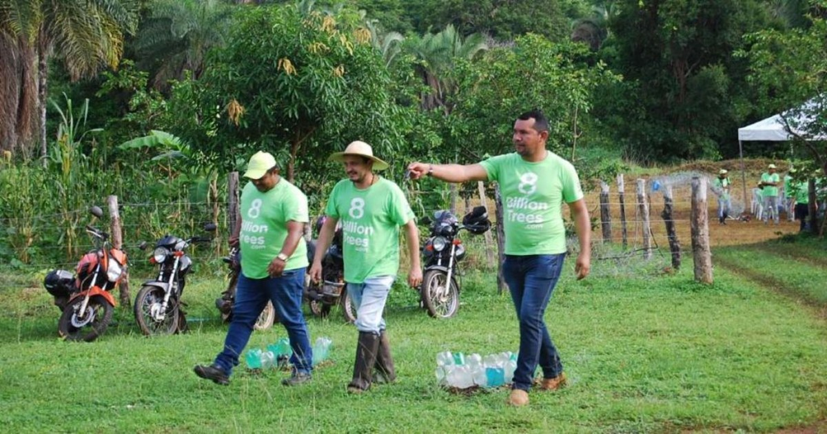 Image of three 8 Billion Trees team members walking at a forestry project site that is part of a carbon offset initiative