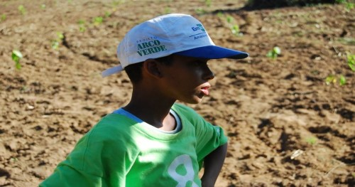 Young kid stands in the middle of a field wearing 8 Billion Trees brand green t-shirt with hands on his hips at a tree planting site with recently planted native saplings in the background in the central Brazilian state of Tocantins