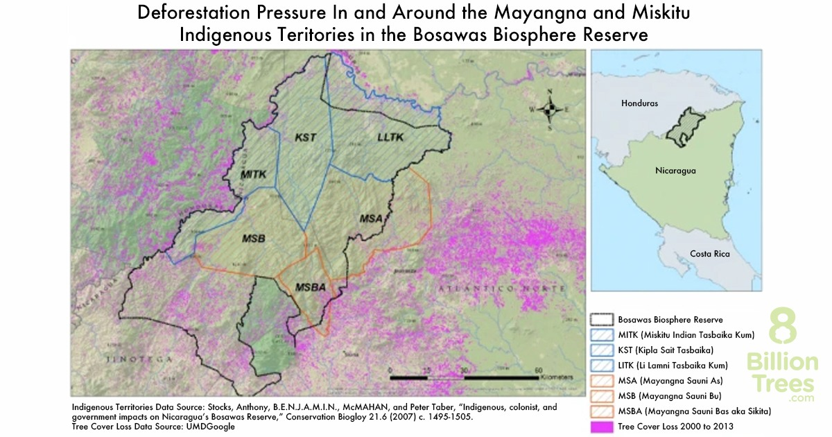 Map showing the deforestation pressure near the location of 8 Billion Trees new planting site in Nicaragua