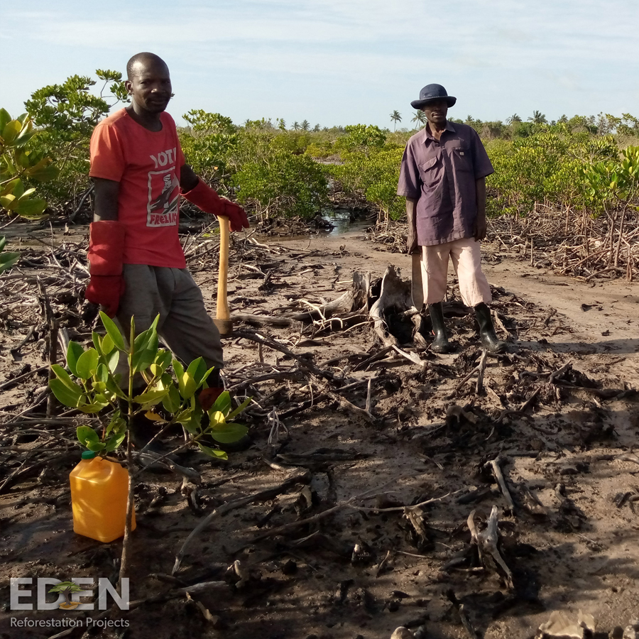 Two men standing in the mud at a forestry project in Mozambique