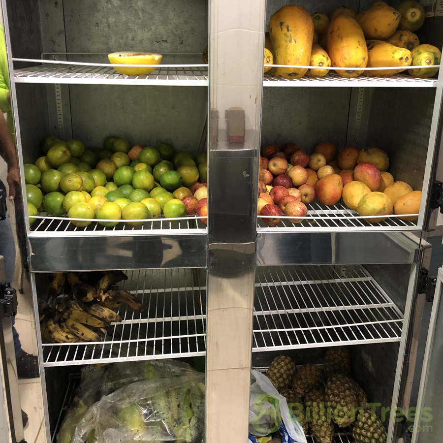 The food needed to maintain the Tocantins Fauna Center.
