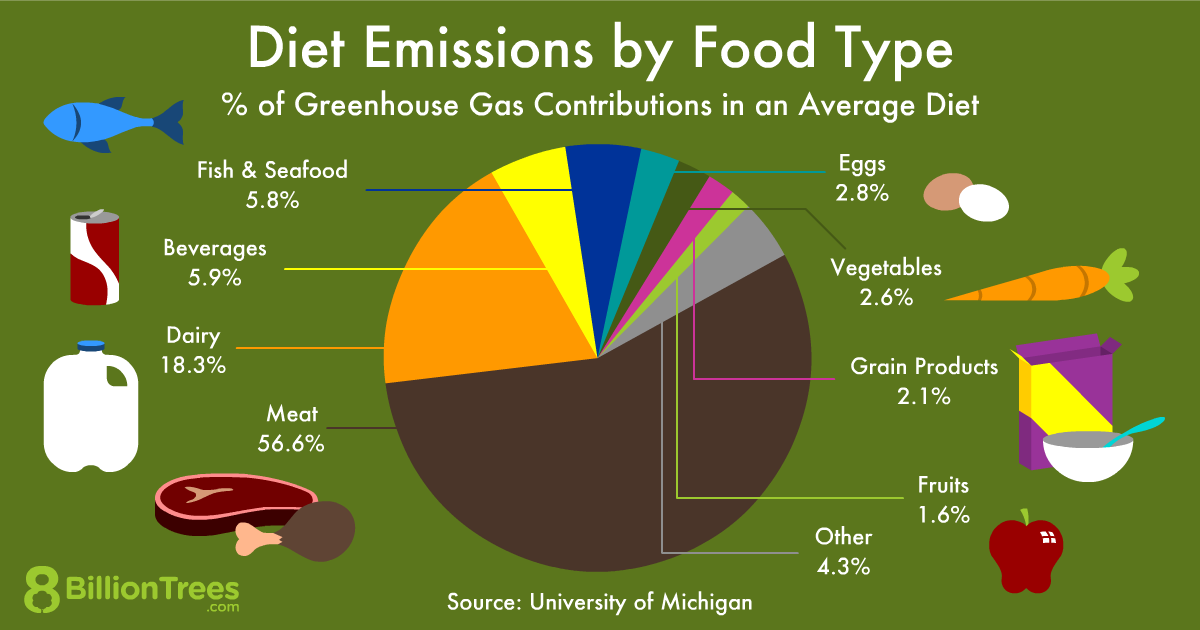 Diet emissions by food type pie chart graphic.
