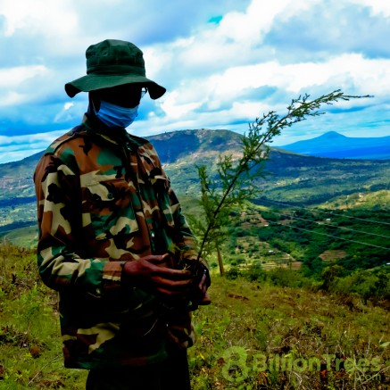 Reforestation in Kenya, carried out by 8 Billion Trees team member.