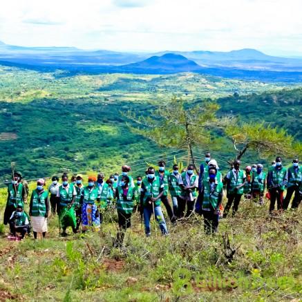 Teams of volunteers in Kenya plant trees.