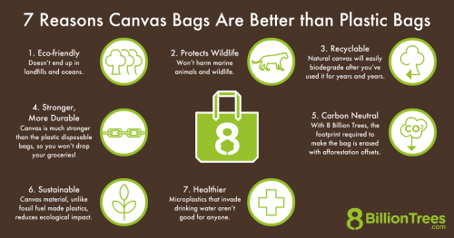 """An 8 Billion Trees branded graphic with the title, """"7 reasons canvas bags are better than plastic bags"""" and listing """"eco-friendly, protects wildlife, recyclable, stronger, more durable, carbon neutral, sustainable, and healthier"""" as the reasons."""