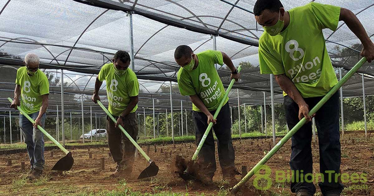 Four men 8 Billion Trees workers raking the ground in a greenhouse nursery in Brazil.