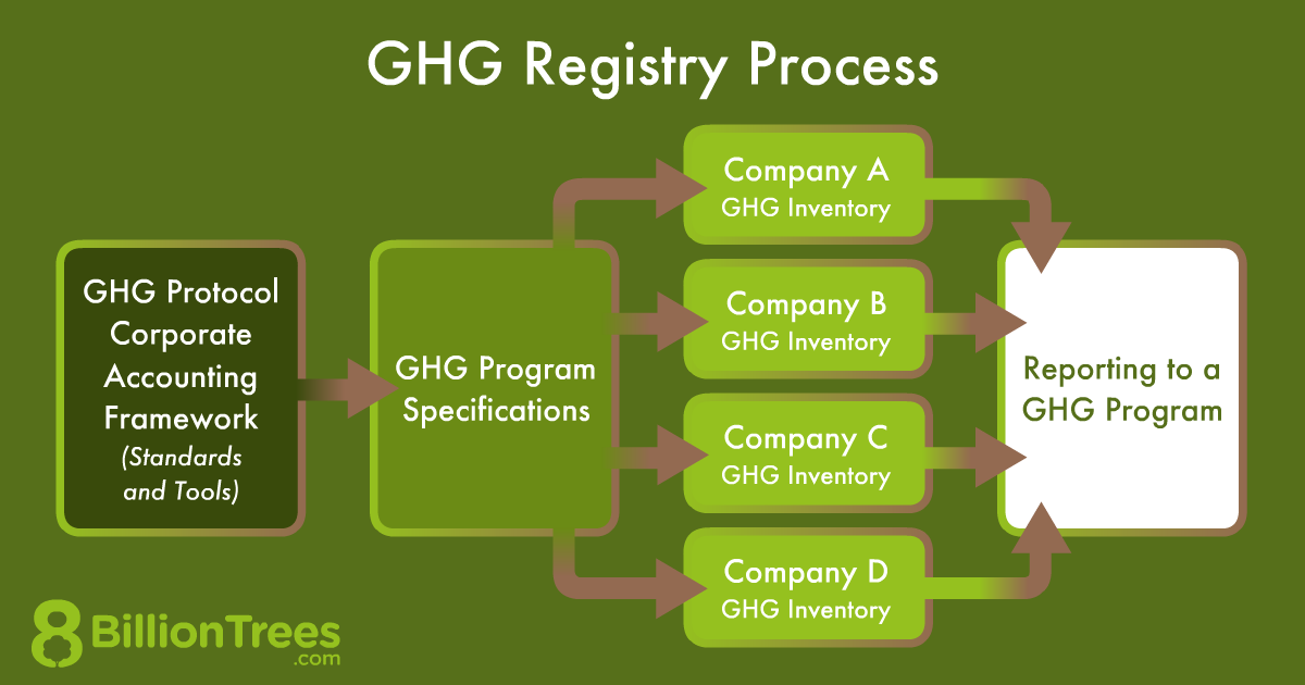 An 8 Billion Trees graphic of the process of a GHG registry
