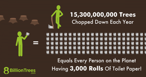 8 Billion Trees brand graphic image illustrating 15 billion trees chopped down annually would equal to 3000 per toilet paper rolls per person using rows of toilet paper, two green stick figures, and tree trunks