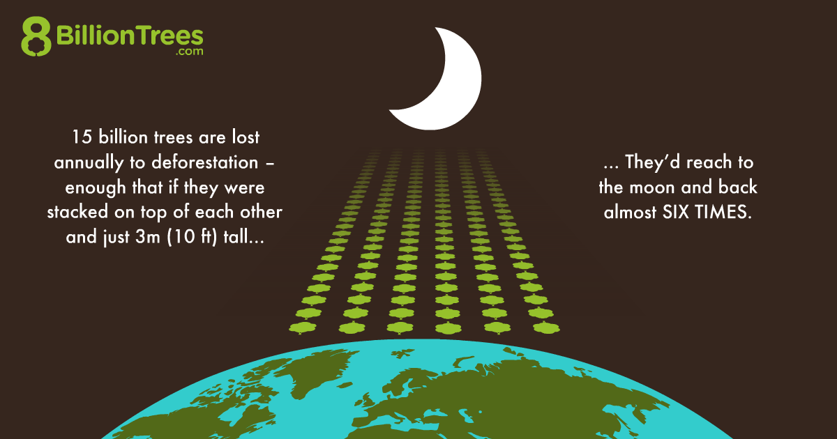 8 Billion trees graphic image illustrating the amount of trees lost due to deforestation annually is equal to the moon and back six times shown using rows of trees between earth and the moon