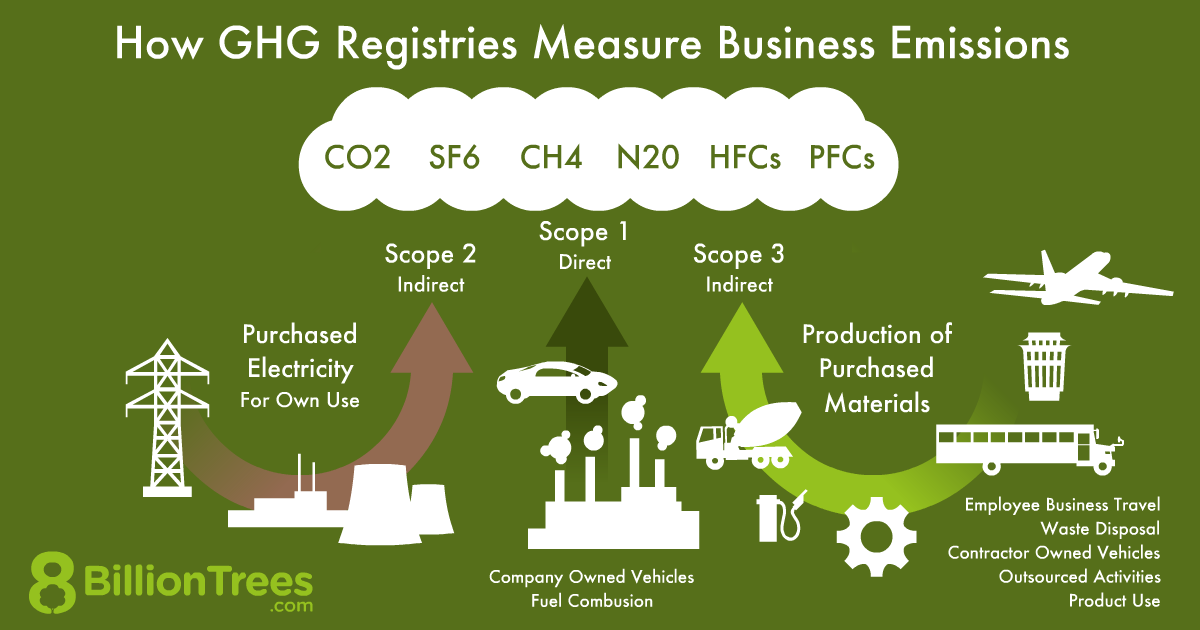 An 8 Billion Trees graphic of how GHG registries measure business emissions, through three scopes