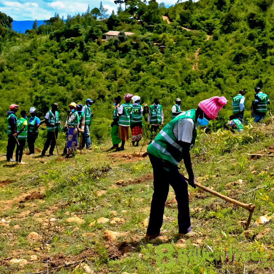 Person with a hoe and team members in 8 Billion Trees vests planting trees at a Kenya planting site, with a hill behind them and an 8 Billion Trees watermark.