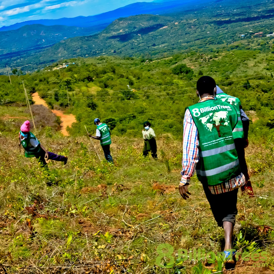 A view of 8 Billion Trees tree-planting volunteers in vests with the Kenya landscape behind them, and an 8 Billion Trees watermark.