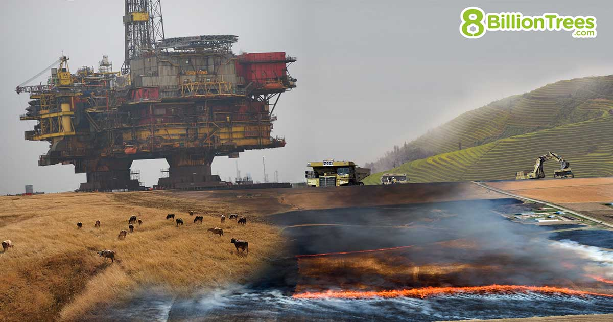 8 Billion Trees brand image of an oil rig, heavy machinery, and fires destroying a pasture of cows grazing in an open field