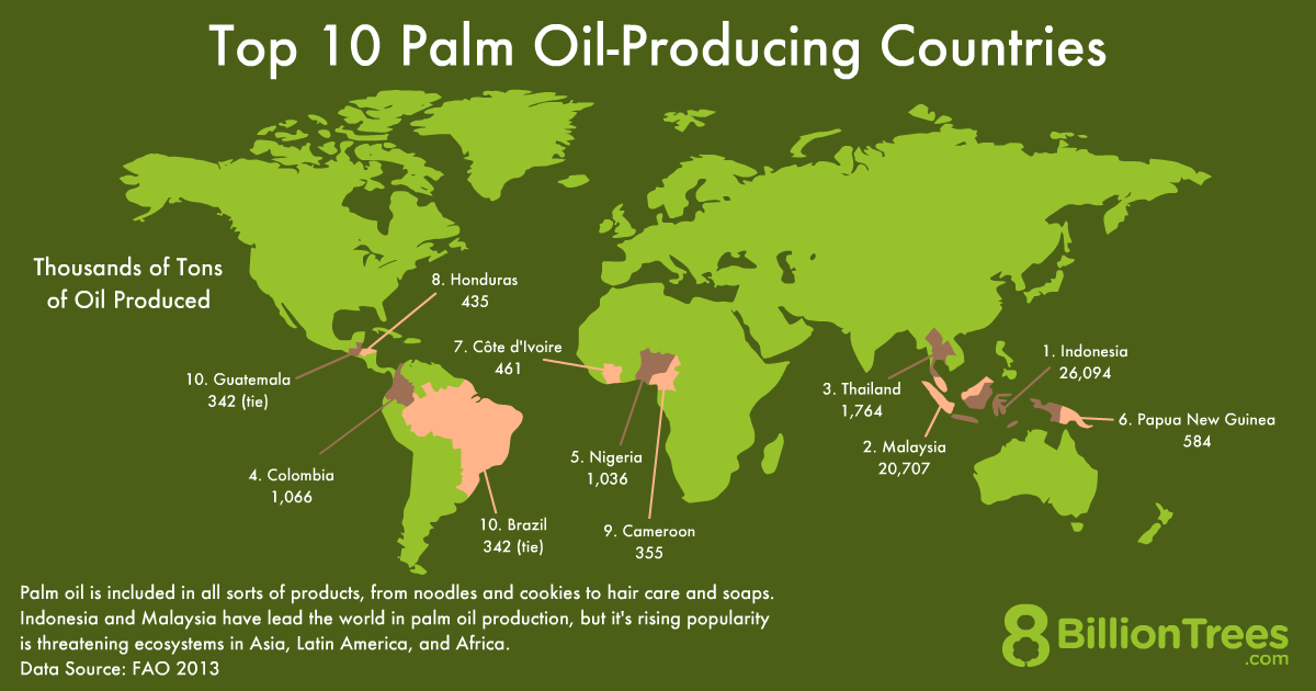 An 8 Billion Trees graphic titled 'Top 10 Palm Oil-Producing Countries' and an illustration of a world map, with thousands of tons of oil produced per country, showing that Malaysia and Indonesia are leading in palm oil production.