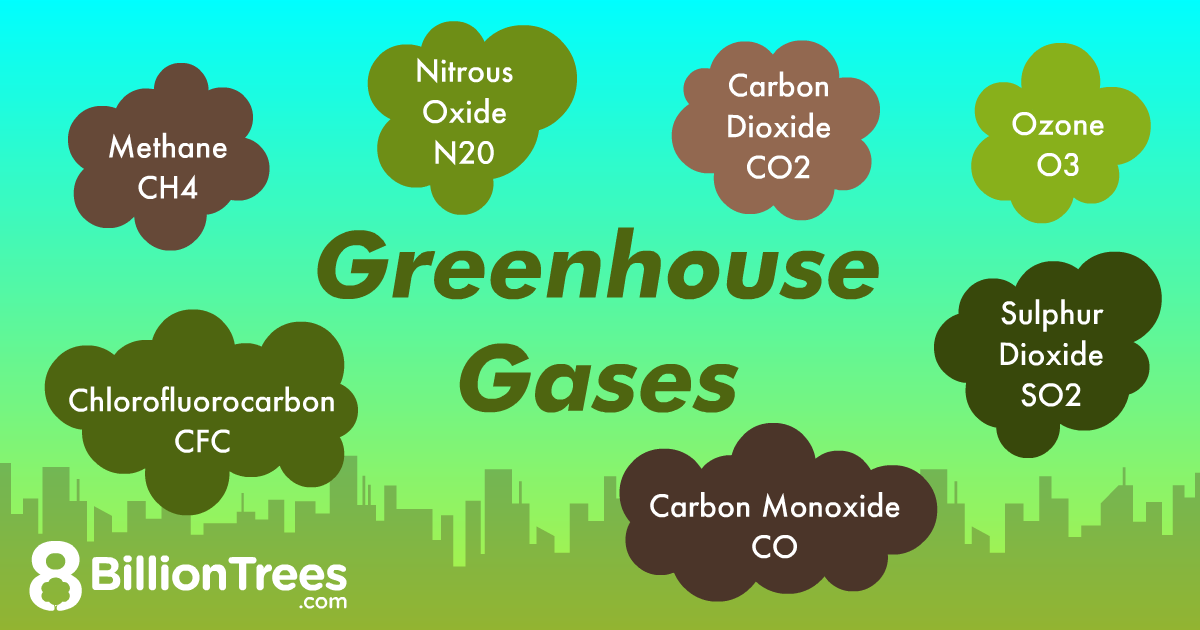 Various types of greenhouses gases graphic by 8 Billion Trees.