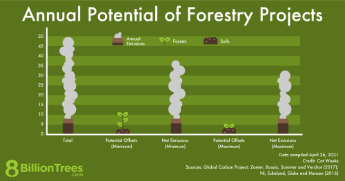 An 8 Billion Trees graphic showing the annual potential of forestry projects in climate mitigation.