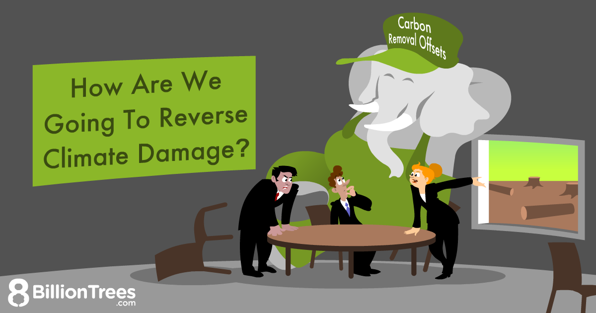 An 8 Billion Trees Graphics of an elephant that represents carbon removal offsets in a meeting room with people tackling the reversal of damage done in the environment.