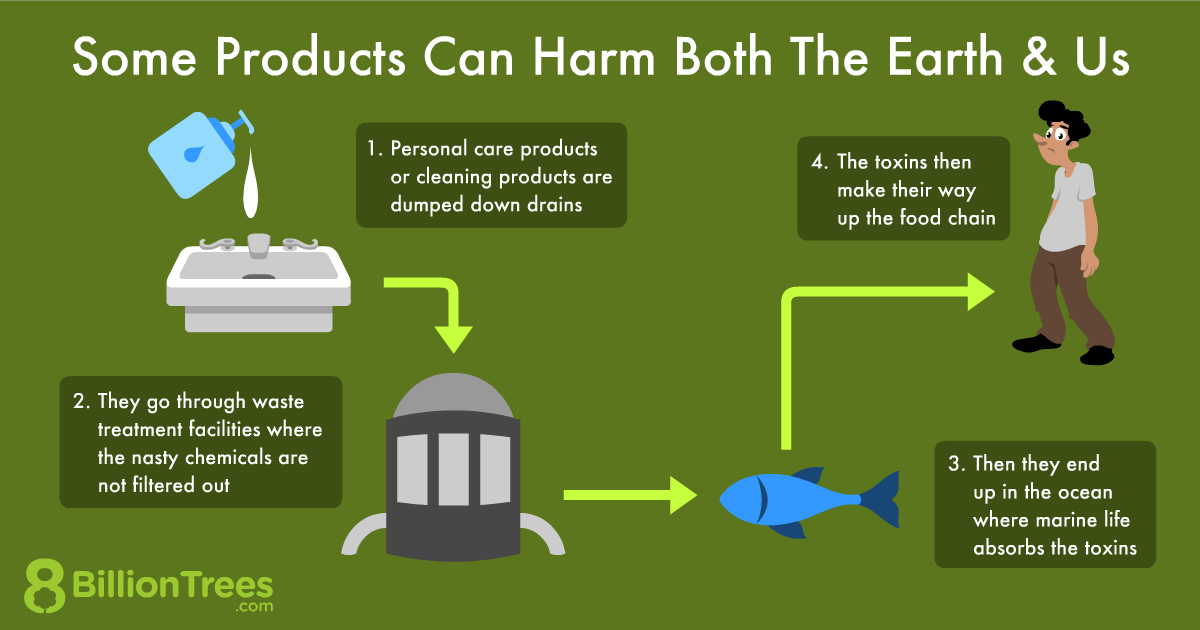 An 8 Billion Trees graphic showing how some products can harm humans and nature.