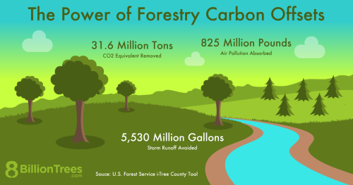 An 8 Billion Trees graphic illustrating trees and a stream, with statistics showing the power of forestry carbon offsets, including 31.6 tons of CO2e removed from the atmosphere.