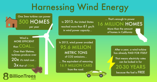An 8 Billion Trees graphic showing facts about harnessing wind energy.