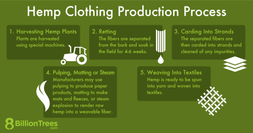 An 8 Billion Trees graphic showing the process of producing hemp clothing.