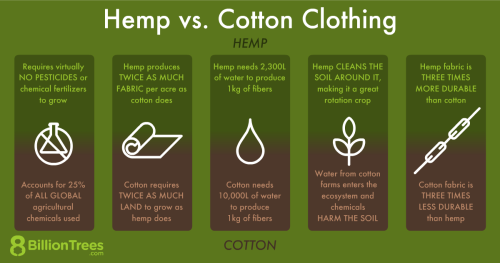 An 8 Billion Trees graphics of differences of clothes made from hemp and cotton.