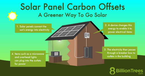 An 8 Billion Trees graphic showing how solar panels work to conduct electricity from the sun's energy.