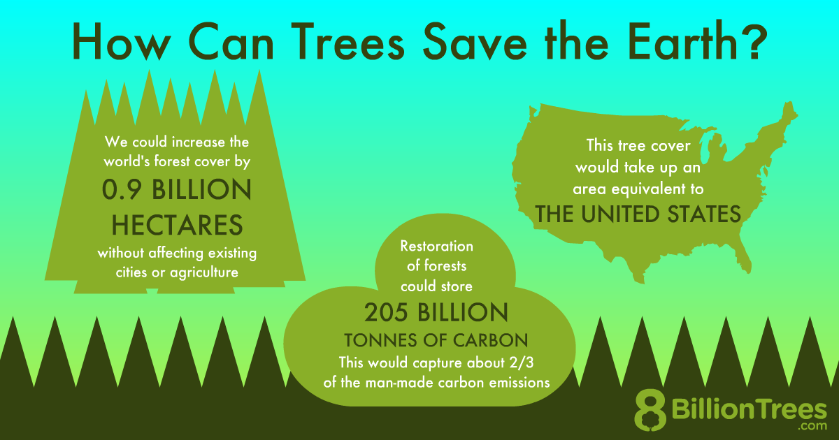 An 8 Billion Trees graphic showing how trees can save the planet by sequestering carbon dioxide.