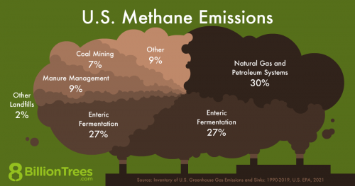 A 8 Billion Trees graphic showing the activities that emits methane gas in the US.